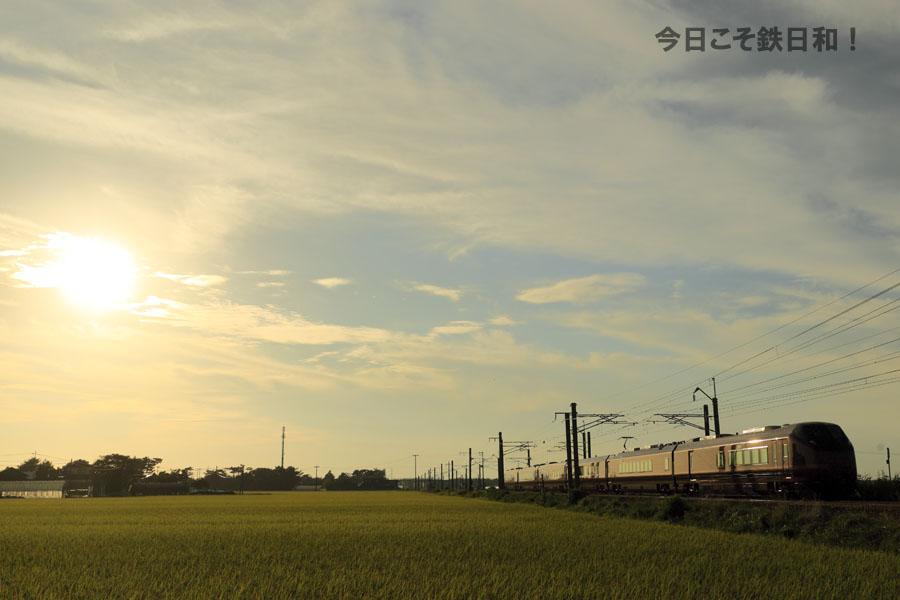 _MG35155.jpg