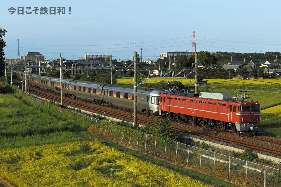 _MG35195_1.jpg