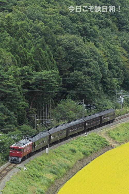 _MG35344.jpg