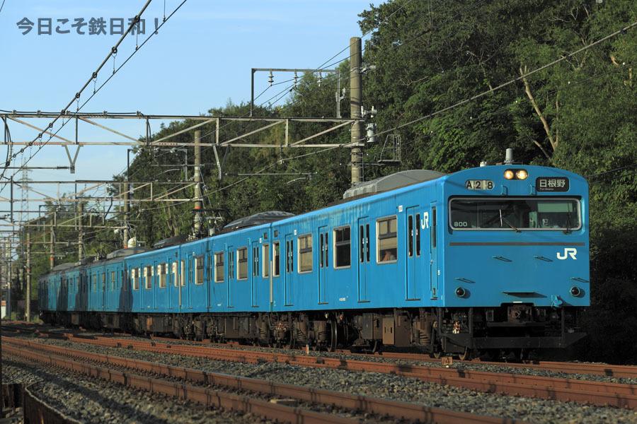 _MG35521.jpg