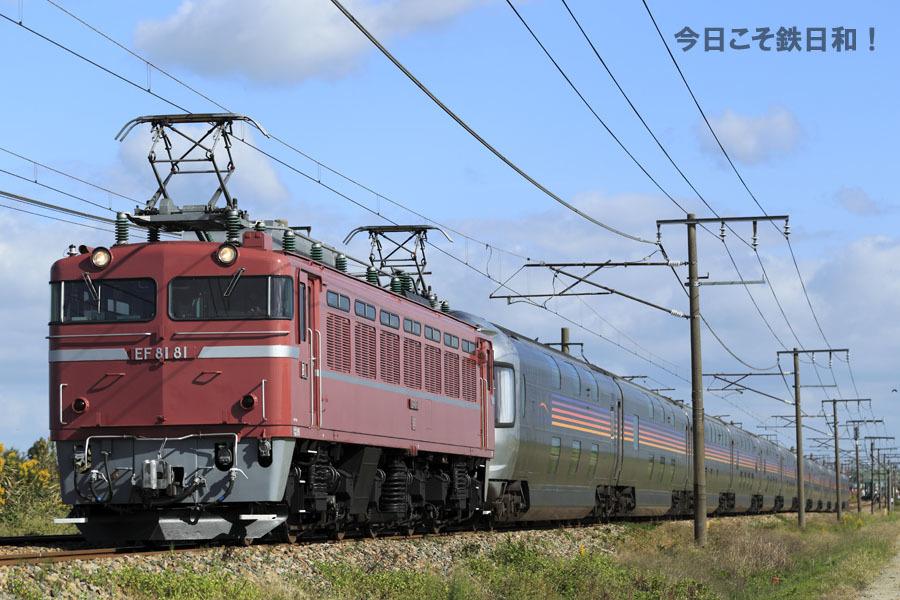 _MG35561.jpg