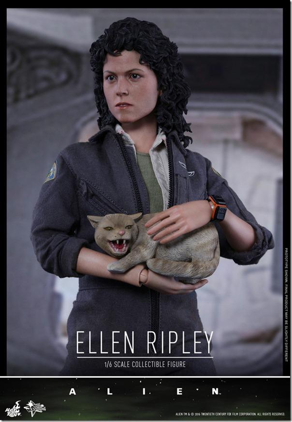 ripley-14