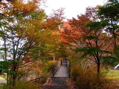 山中湖・紅葉まつりh_1