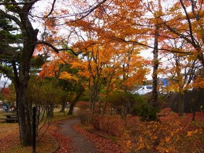 山中湖・紅葉まつりv_1