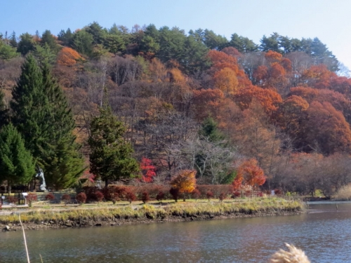 晩秋の蓼科湖e_1