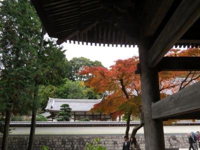 山門と紅葉b_1