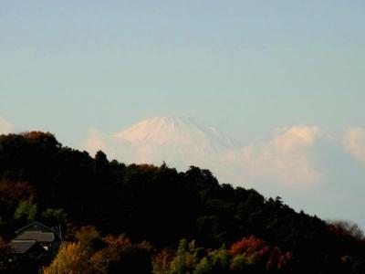 冠雪の富士山2リサイズ画