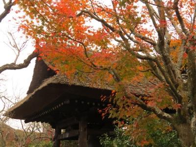 鐘楼と紅葉a_1