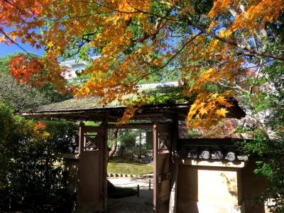 茶室壽立庵の紅葉a_1