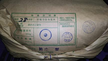 28年 秋田 玄米
