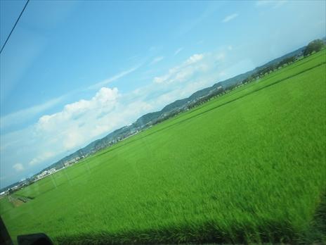 IMG_8475_5jo5.jpg