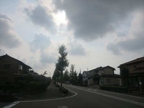 IMG_9390_5jo5.jpg
