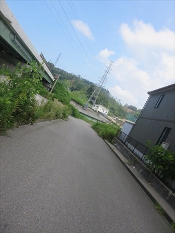 IMG_9526_5jo5.jpg