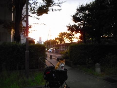 2016_0808_184856-DSCN0124.jpg