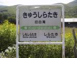 k-shirataki02.jpg