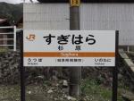 sugihara07.jpg