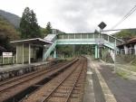 sugihara09.jpg