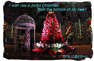 クリスマス④