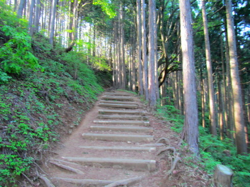 H28.御岳山(6)-14