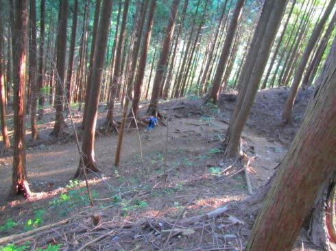 H28.御岳山(6)-31
