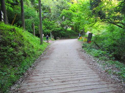 H28.御岳山(6)-33