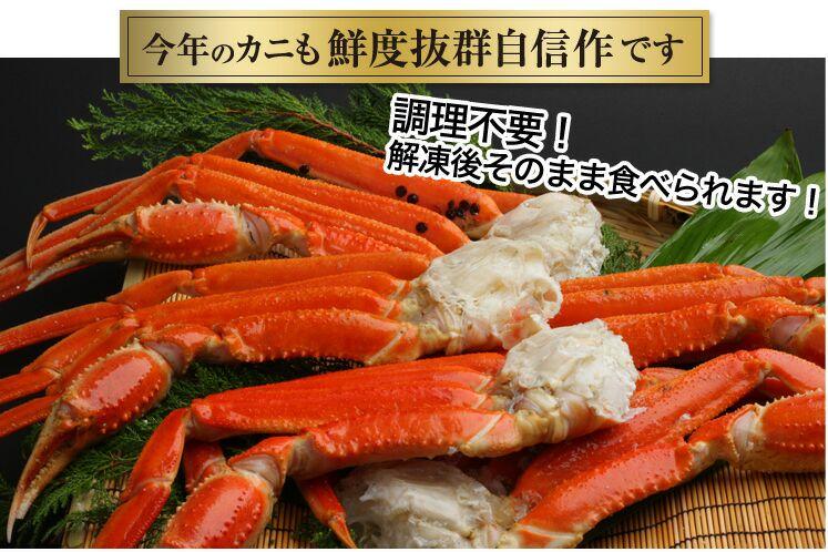 040_shizuru01.jpg
