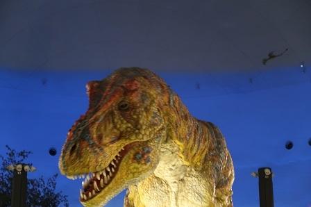 恐竜博物館(2)-2
