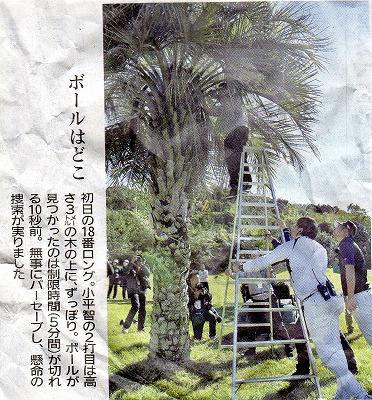 scan287.jpg