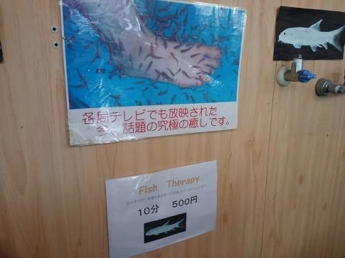 2807こんぴらさん (1)