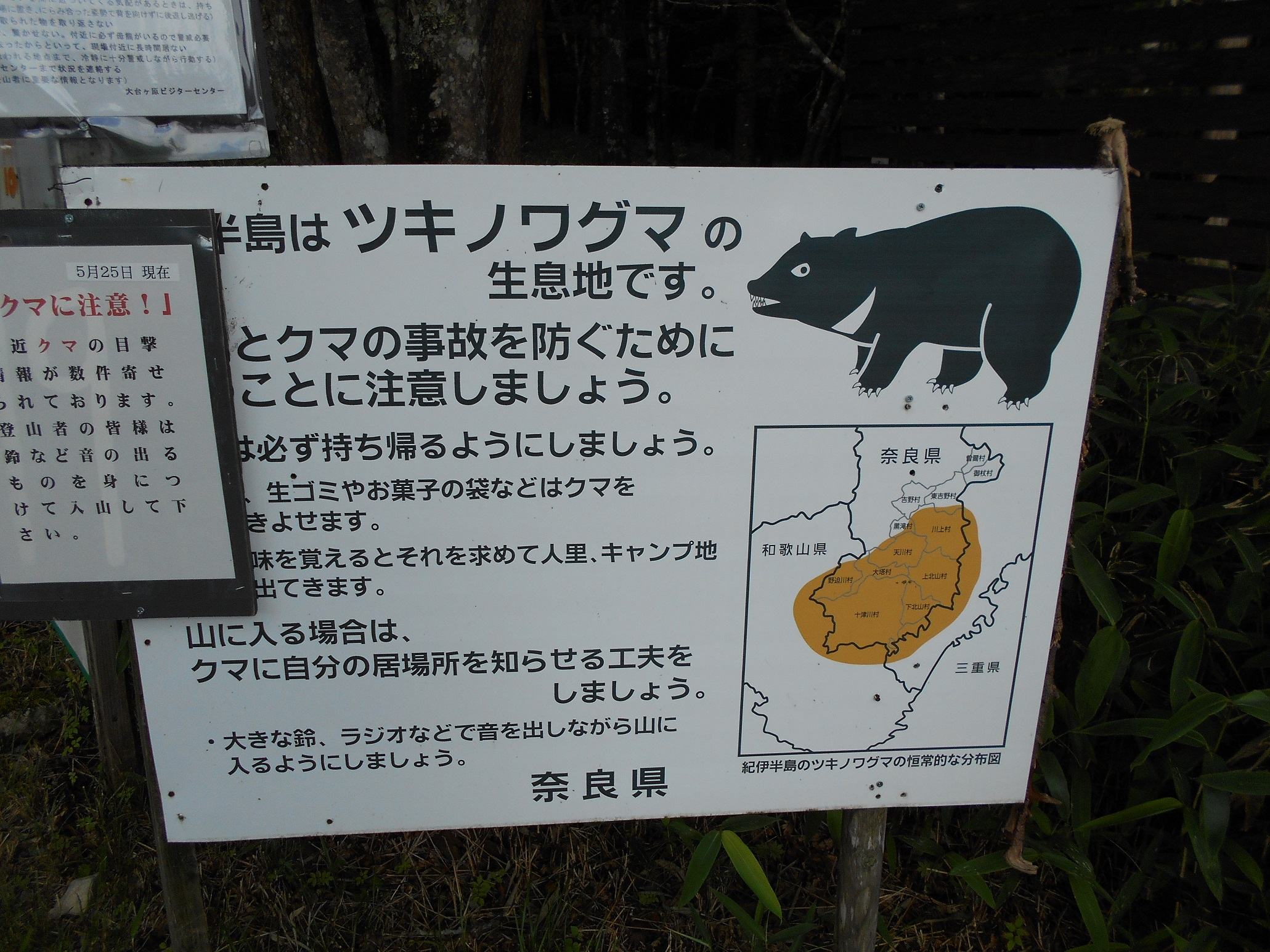大台ケ原熊看板