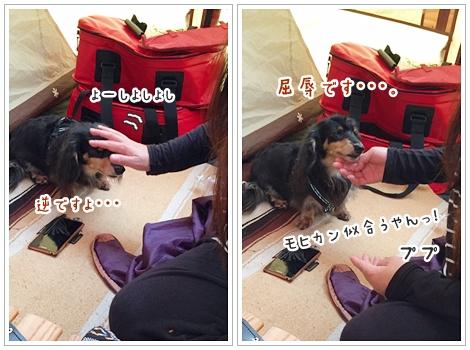 fc2_2016-10-13_02.jpg
