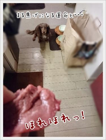 fc2_2016-11-11_02.jpg