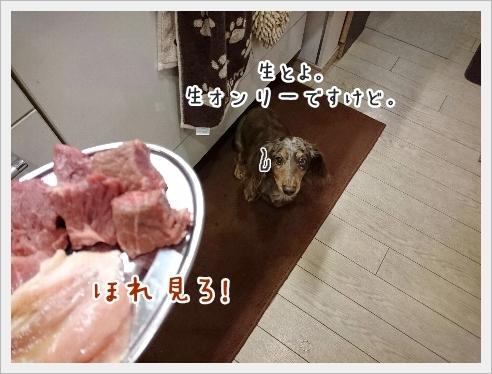 fc2_2016-11-11_05.jpg