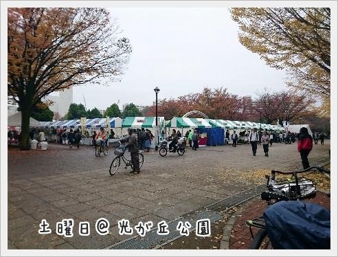 fc2_2016-11-21_03.jpg