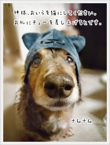 fc2_2016-12-15_05.jpg