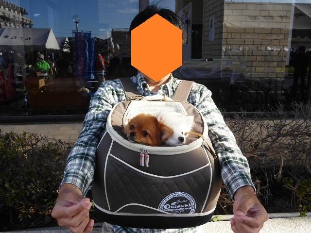 20151103ポンころバッグ①