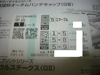 IMGP3118.jpg