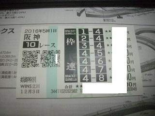 IMGP3214.jpg