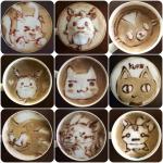 collage_photocat5.jpg