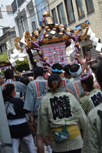 三社祭(東京・山谷)本社神輿(三之宮)