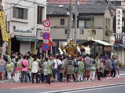 三社祭 【東京・山谷】2016年5月14日(土)画像