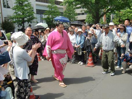 Sumo Wrestler watching ④