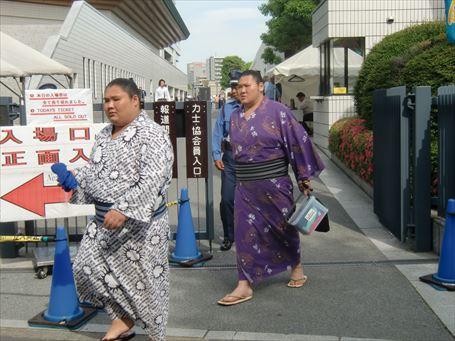 Sumo Wrestler watching ⑪
