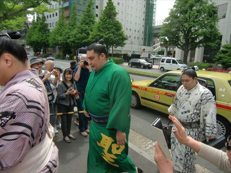 Sumo Wrestler watching ⑧