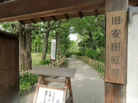 廻遊式の旧安田庭園 ①