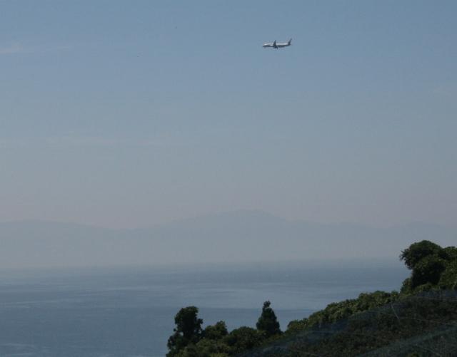 IMG_5521 飛行機(640x501)