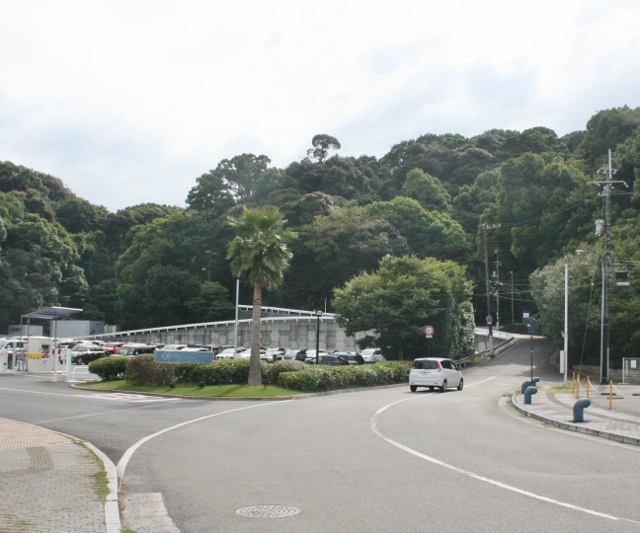 IMG_5754 島を回る道へ(640x533)