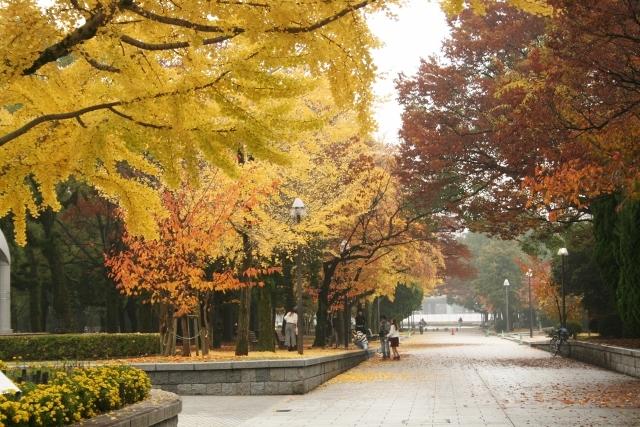 IMG_6608 平和公園(640x427)