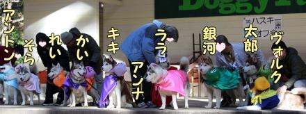 ハスまみれ10th紹介タイム