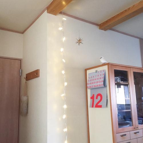 hoshi led light